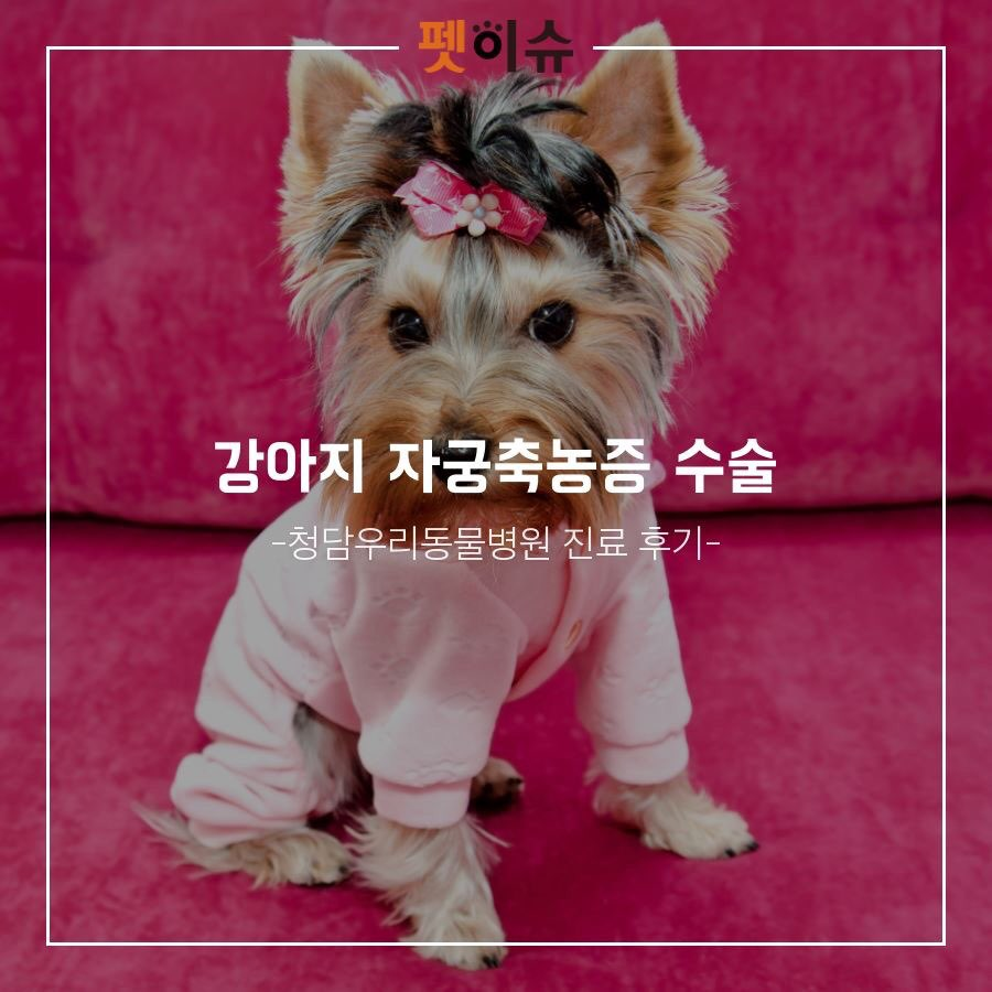 KakaoTalk_20181023_123634815.jpg