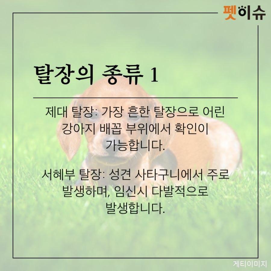 KakaoTalk_20181110_152900741.jpg